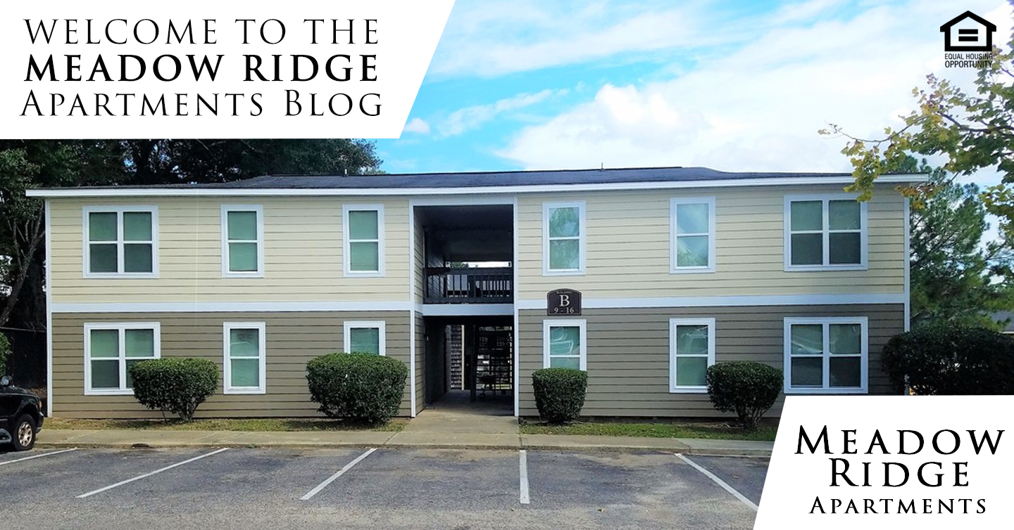 Meadow Ridge Apartments Blog