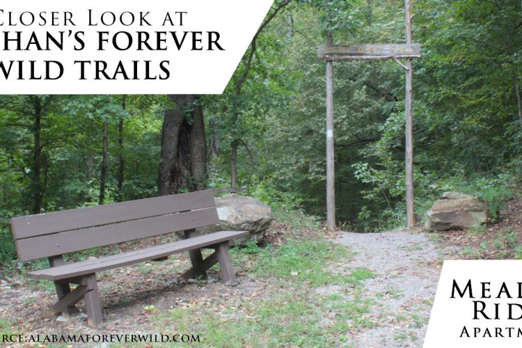A Closer Look at Dothan's Forever Wild Trails