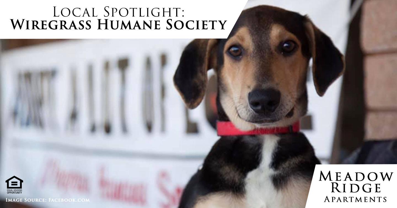Wiregrass Humane Society
