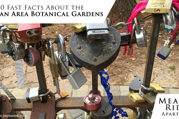 10 Fast Facts About the Dothan Area Botanical Gardens