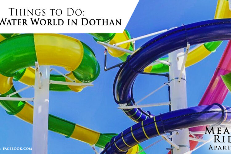 Things to Do: Visit Water World in Dothan